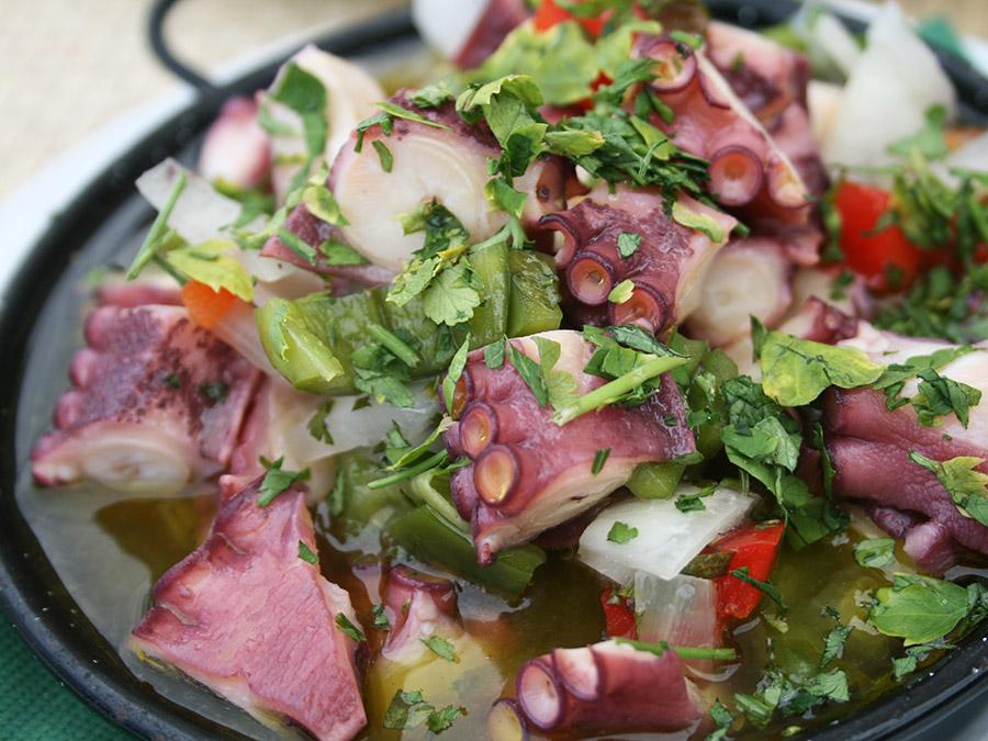 Salada de Polvo | Saudades de Portugal