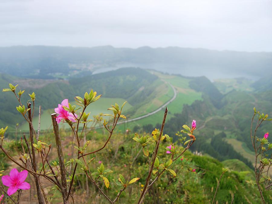 Vakantie Azoren | Saudades de Portugal