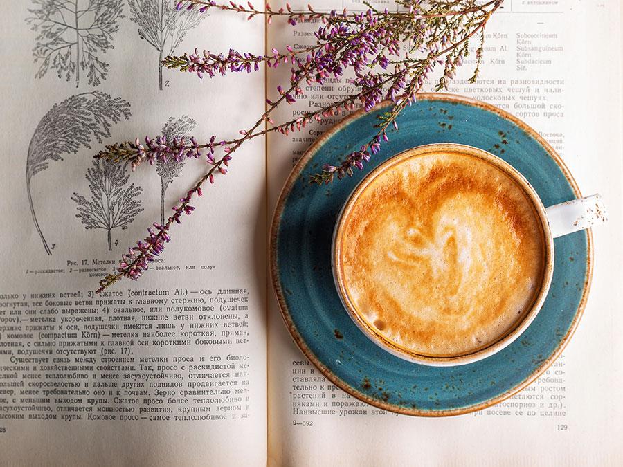 Boekenweek | Saudades de Portugal