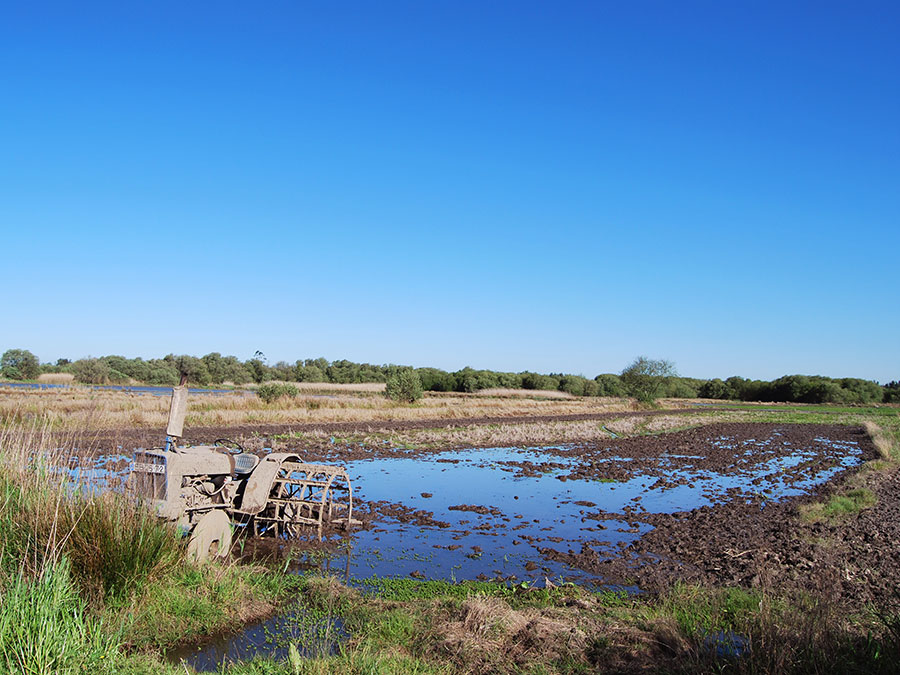 Natuurproject BioRia | Saudades de Portugal