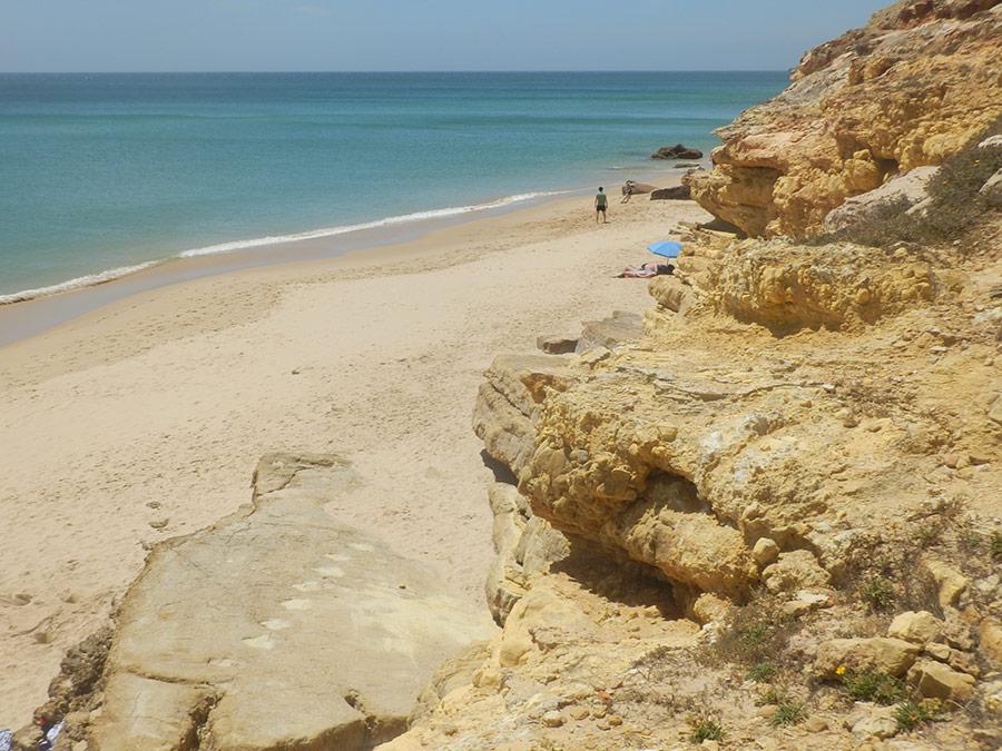 dinosaurus sporen | Saudades de Portugal