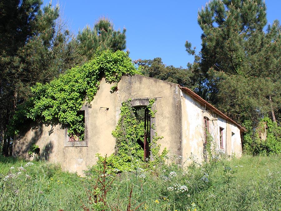 Hello Huizenjacht | Saudades de Portugal