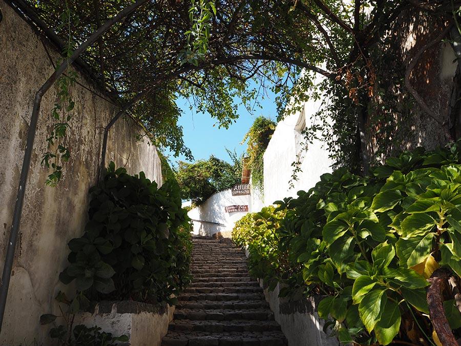 Escolha Algarve