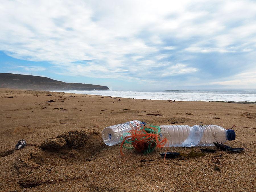 Milou in Mafra: Plasticvrije Portugese kust | Saudades de Portugal