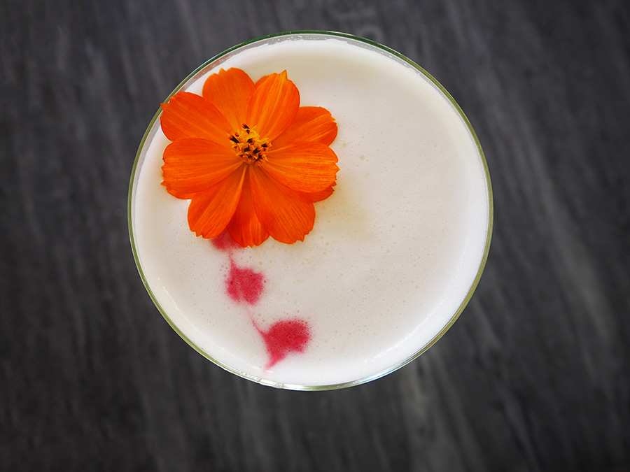 Amarguinha Sour Cocktail