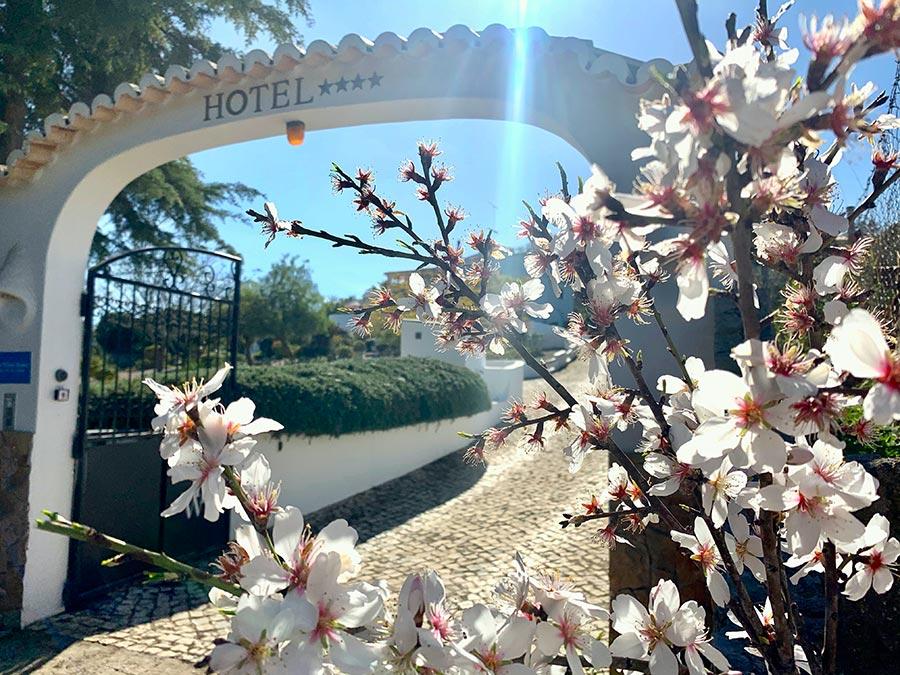 Villa Algarve: Que frio!