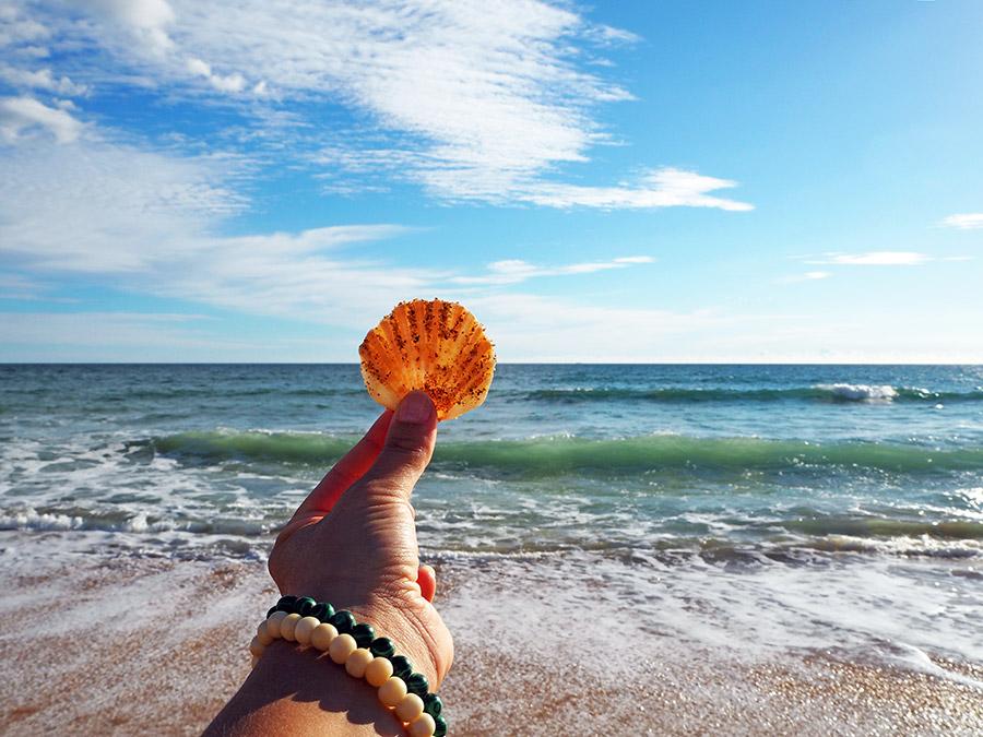 A Taste of Portugal: Sea